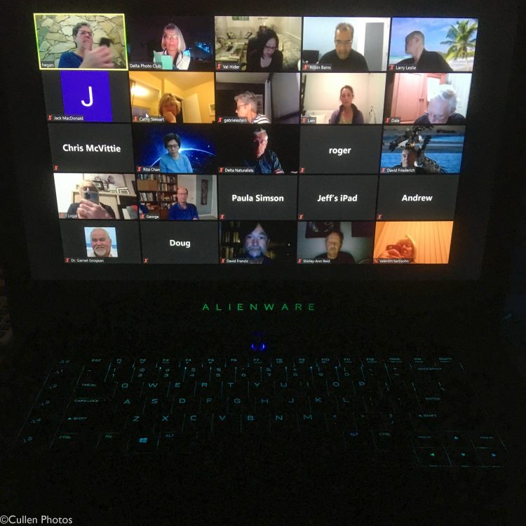 Zoom meeting screenshot
